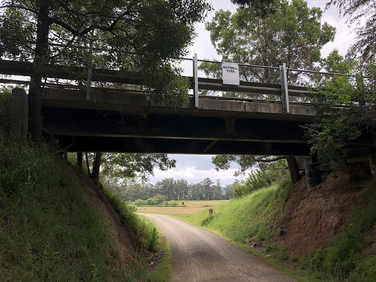 Lilydale to Warburton Rail Trail - Bridge over the track