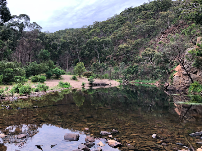 clear water at Grahams Dam on the lerderderg river victoria